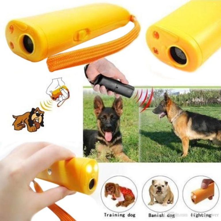 Which Dog Training Device Is Right For You?