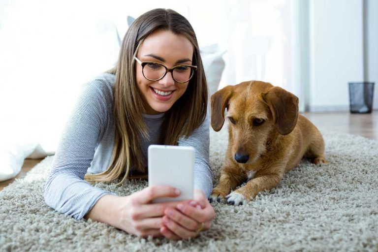 The Best Free Dogs Apps For Every Dog Owner