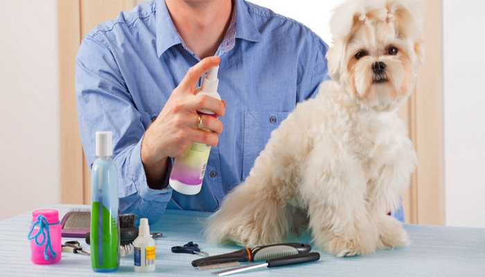 What Are The Benefits Of A Dog Spray?