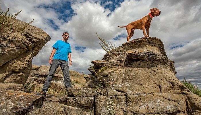 Outdoor Adventure For Dogs -Best outdoor friendly adventures for your dogs